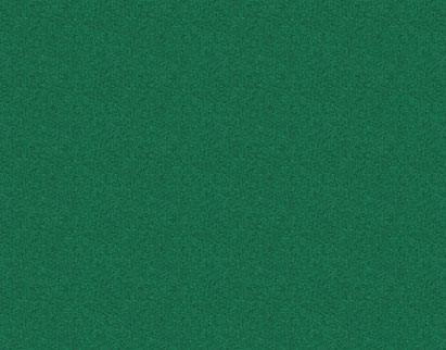 Q1430 Rainforest